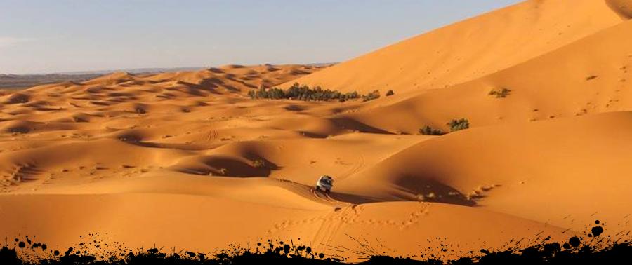 TC-Offroad-Trekking, Marokko Maghreb, Offroad Adventure, geführte Reisen, Offroadgelände, Offroad Geländewagen, Abenteuerreisen,Mongolei,Marokko