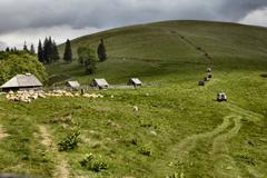 TC-Offroad-Trekking, Offroad Reisen, Offroad Training, Grosse Karpatenüberquerung, Offroad Adventure, geführte Reisen, Offroadgelände, Offroad Geländewagen, Abenteuerreisen,Mongolei,Marokko, Sardinien, Korsika,Sterne-der-Karpaten
